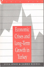 Economic Crises and Long-Term Growth in Turkey