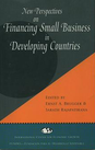 New Pperspectives on Financing Small Business in Developing Countries